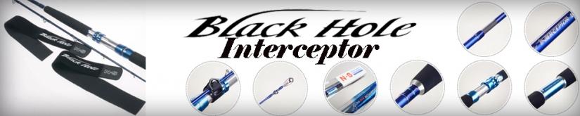 Black Hole Interceptor