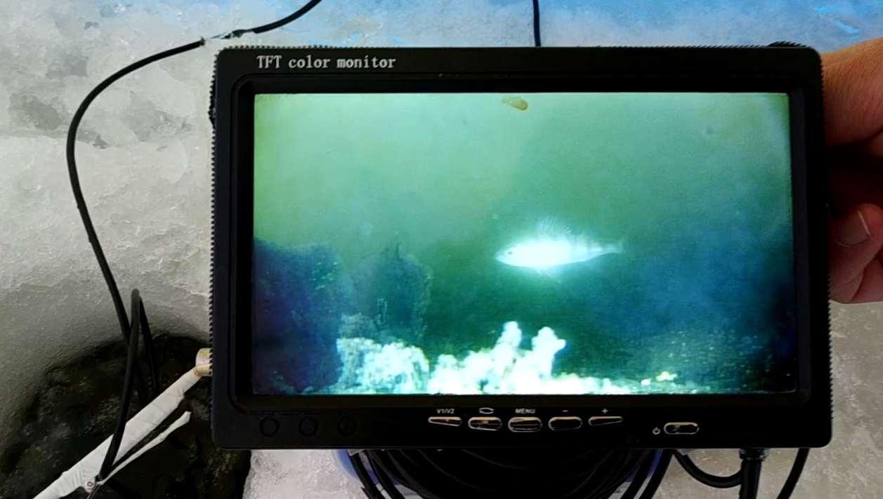 Подводная камера для рыбалки