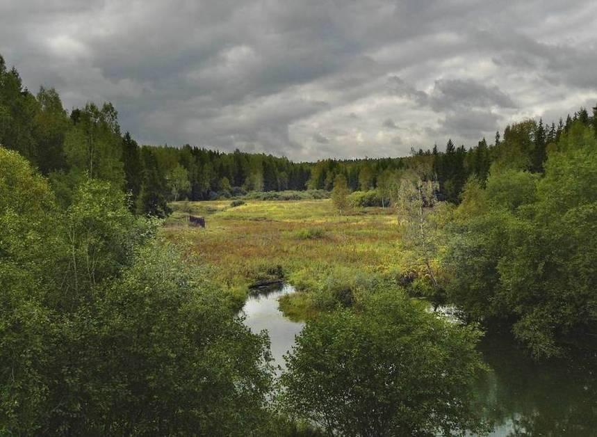 Река Молокча