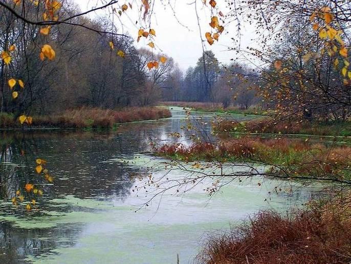 Река Вьюнка